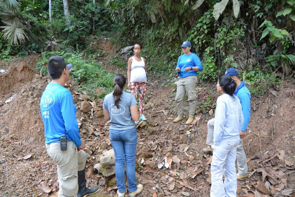 GMAP helped the HALO Trust in Colombia to carry out gender and diversity-sensitive humanitarian demining - so that displaced persons can return to their communities